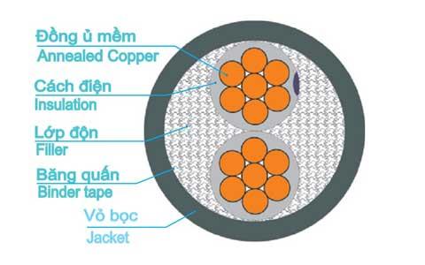 Dây cáp điện trần phú, cáp điện hạ thế CXV 2 lõi